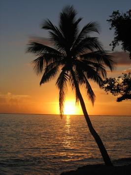 Beautiful Sunset Wallpapers screenshot 1