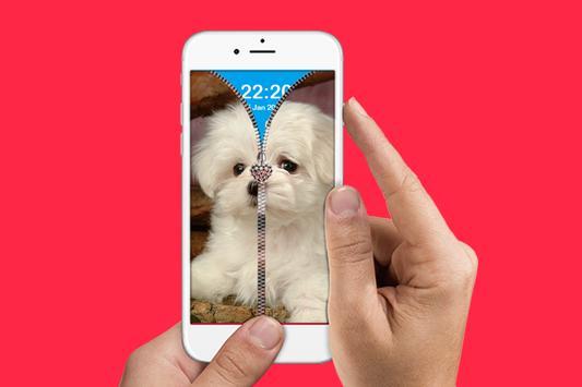 Cool Puppy Zip Lock apk screenshot