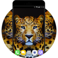 Theme for Coolpad Note 5 HD