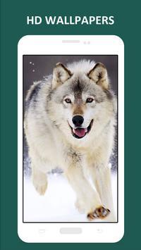 Cool Wolf HD Wallpapers screenshot 3