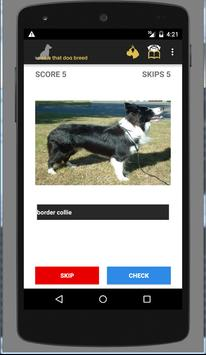 Name That Dog Breed apk screenshot