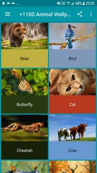 +1100 Animal Wallpapers poster