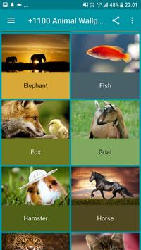 +1100 Animal Wallpapers screenshot 14