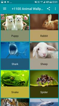 +1100 Animal Wallpapers screenshot 17