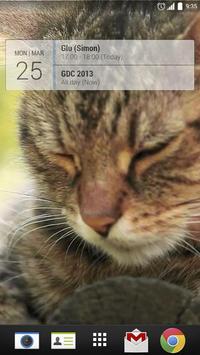 Cat World Live Wallpaper poster