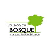 Callejón del Bosque icon