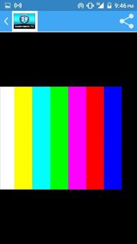 Canal 29 de OMNIVISION screenshot 2