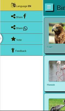 Bird Sound screenshot 15