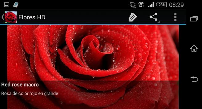 Flowers in HD screenshot 2