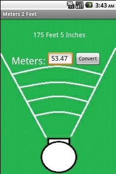 Meters 2 Feet poster
