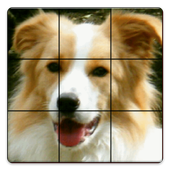 数字と画像のパズル icon