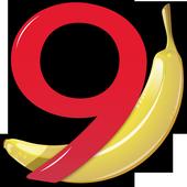 Banana Accounting Mobile icon