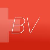 Bundesverfassung BV Schweiz icon