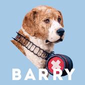 Rescue Barry icon