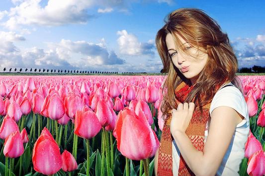 Tulip Photo Frames poster