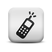 Change voice call icon