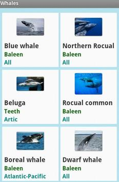 Whales apk screenshot