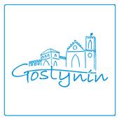 Gostynin icon