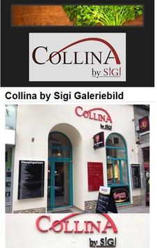 Collina by Sigi apk screenshot