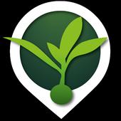 CampoClick icon