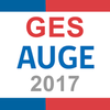 Minsal GESMinsal 2017 アイコン