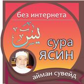 айман сувейд : сура ясин icon
