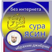 сура ясин : Ибрахим Джибрин icon