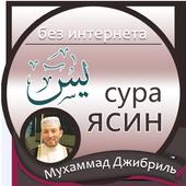 сура ясин : Мухаммад Джибриль icon