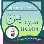мухаммад аль курди : сура ясин icon