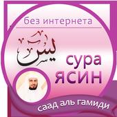 сура ясин : саад аль гамиди icon