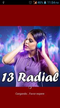 13 Radial poster
