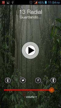 13 Radial screenshot 1
