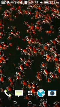 Crabs 3D Wallpaper apk screenshot