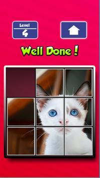 CatSoCute screenshot 2