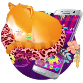 Dreamy Cute Cat 3D Theme icon