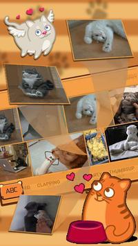 cute cat keyboard brown maine coon apk screenshot