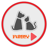 Pets Cute icon