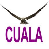 Cuala icon