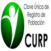 CURP EN LINEA icon