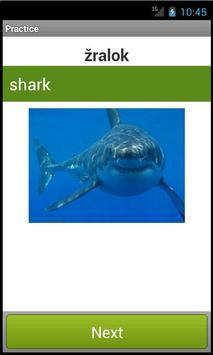 English vocabulary screenshot 4