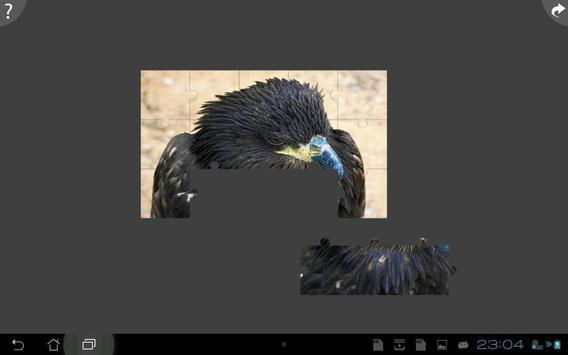 Animals jigsaw puzzles apk screenshot