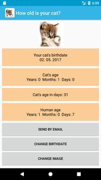 Qué edad tiene tu gato? for Android - APK Download