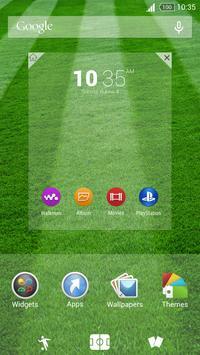Football Theme screenshot 5