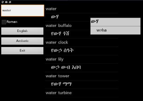 Amharic English Dictionary poster