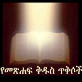 Amharic Bible Verses icon