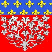 Amiens icon