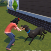 Tips for The Sims 4 Cats And Dogs Antelope icon