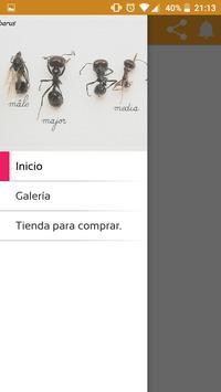 AntsHormiga apk screenshot