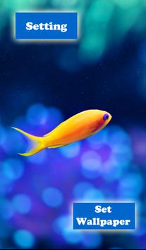 Aquarium Live Wallpaper apk screenshot
