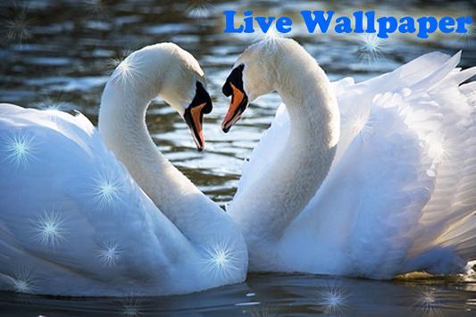 Birds Live Wallpaper screenshot 5